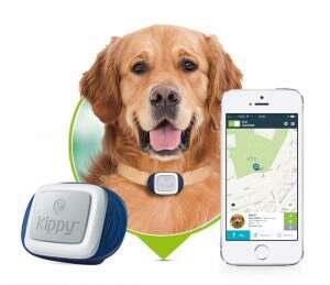 GPS-трекер для домашних питомцев